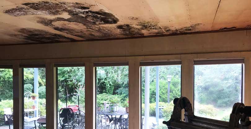 Destroyed Ceiling